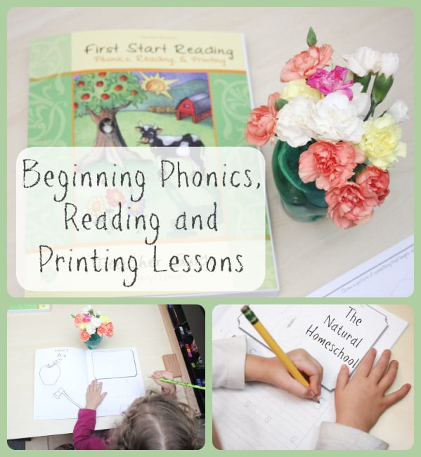 Beginning Phonics, Reading and Printing Lessons