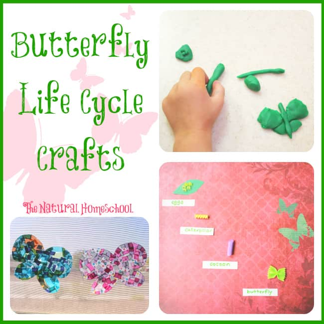 Butterfly Life Cycle for Kids (Free Printables)