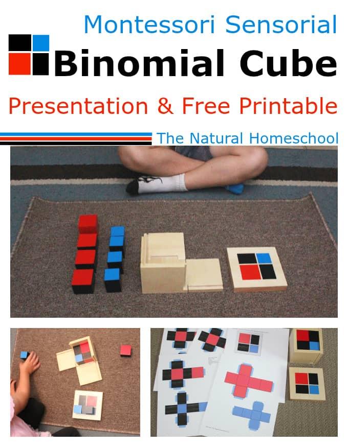 binomial main