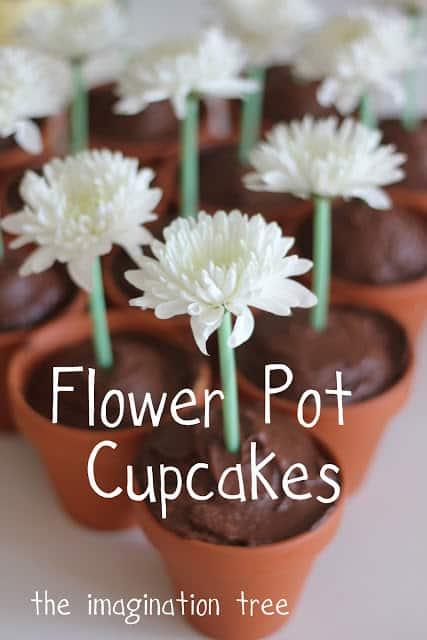 35+ Edible Flower Recipes