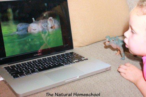 An Alternative to Netflix for your Homeschool