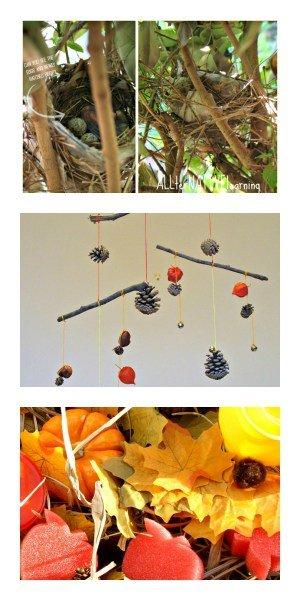 15 Autumn Nature Exploration & Activities