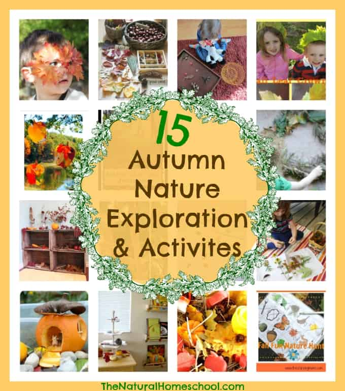 15 Autumn Nature Exploration & Activities