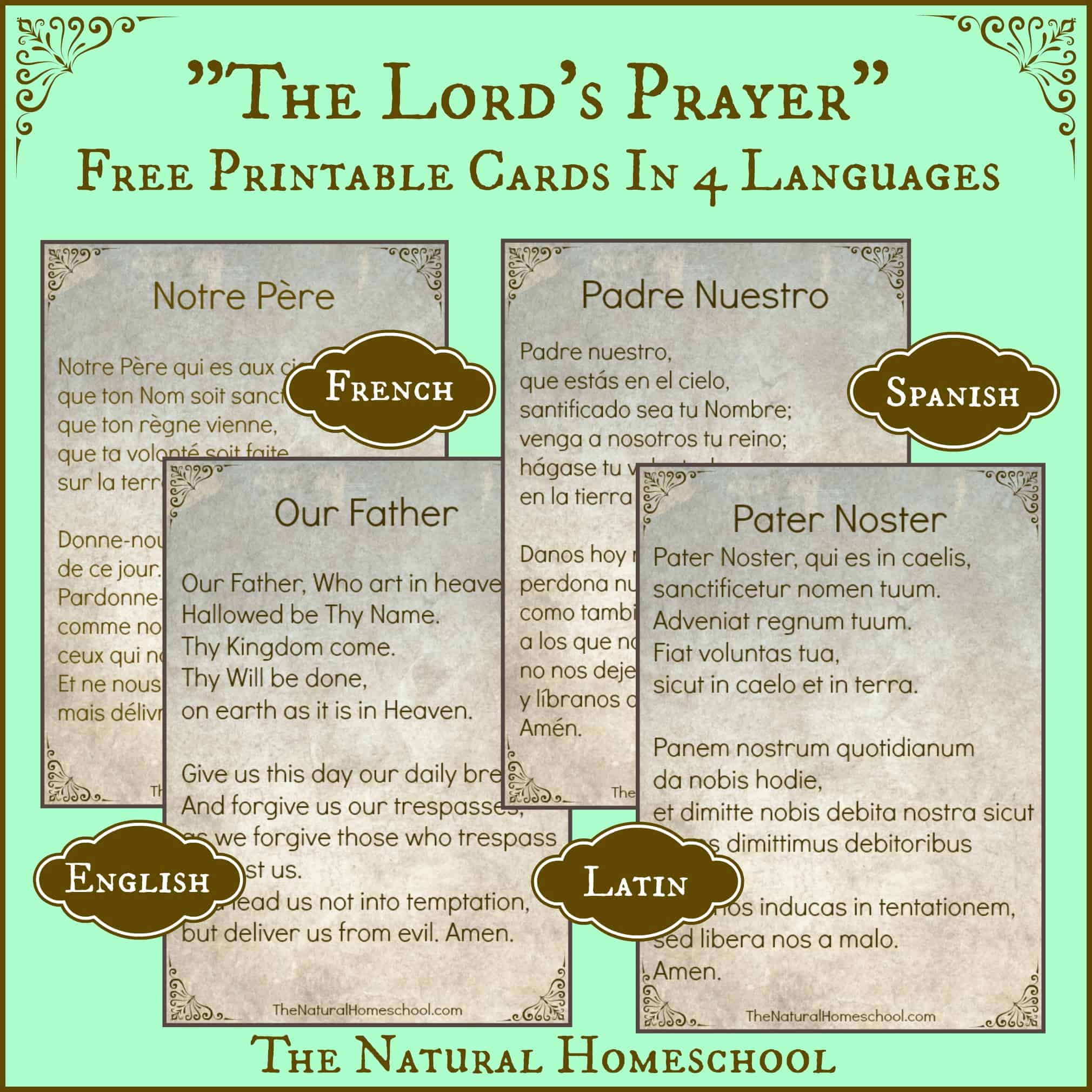 The Lord's Prayer Words in Spanish, Latin, English and ...