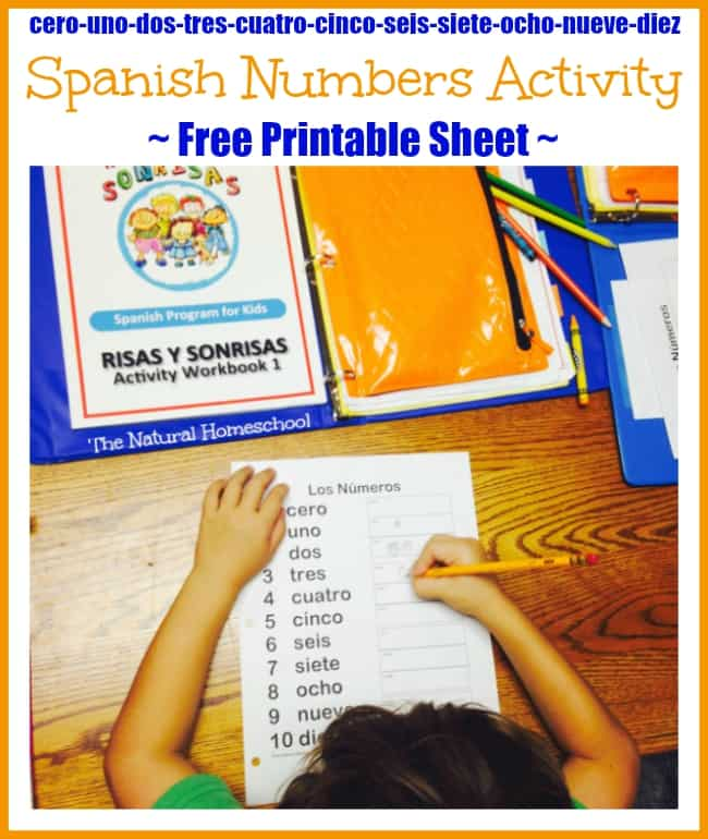 Spanish Interactive Activities {Free Number Printable Sheet}