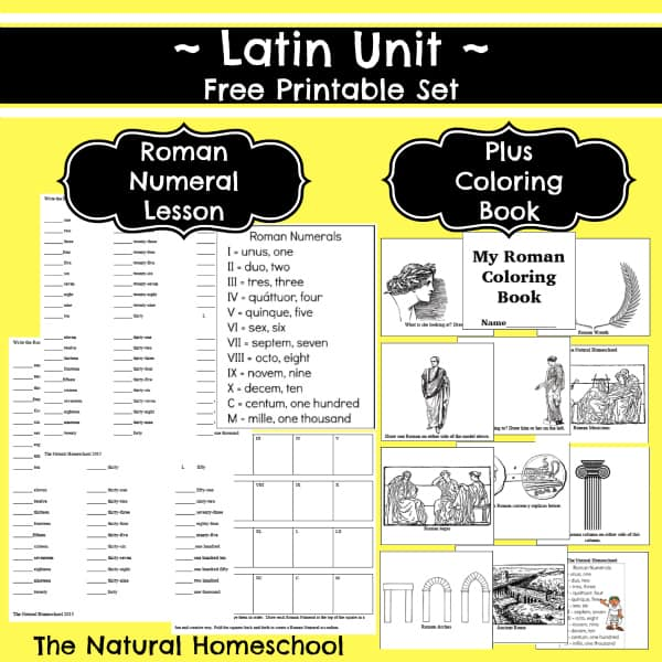 Roman Numeral Lessons (Numbers in Latin, Ancient Roman Culture & Free Printables)