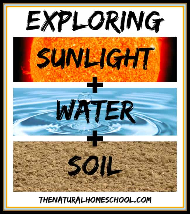 Exploring Sunlight, Water and Soil: And Earth Science Unit