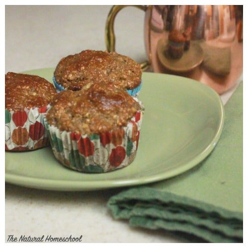 Cinnamon Apple Muffin Recipe