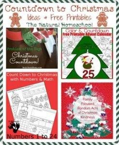 Countdown to Christmas Ideas & Free Printables