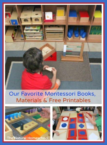 montessori materials pin