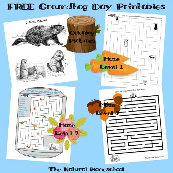 Groundhog Day Activities & Free Printables