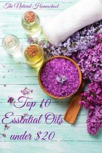 Top 10 Essential Oils under $20