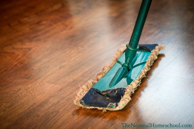 Top 10 Ways To Make Cleaning the House More Fun