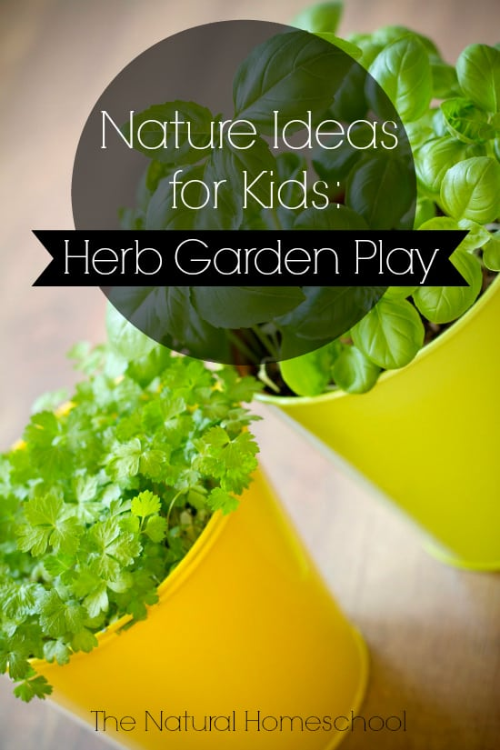nature ideas for kids herb garden play