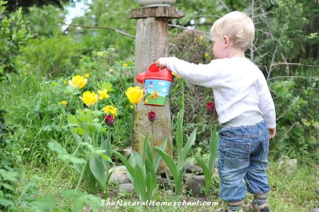 Top 7 Outdoor Activities For Preschoolers To Do This Spring