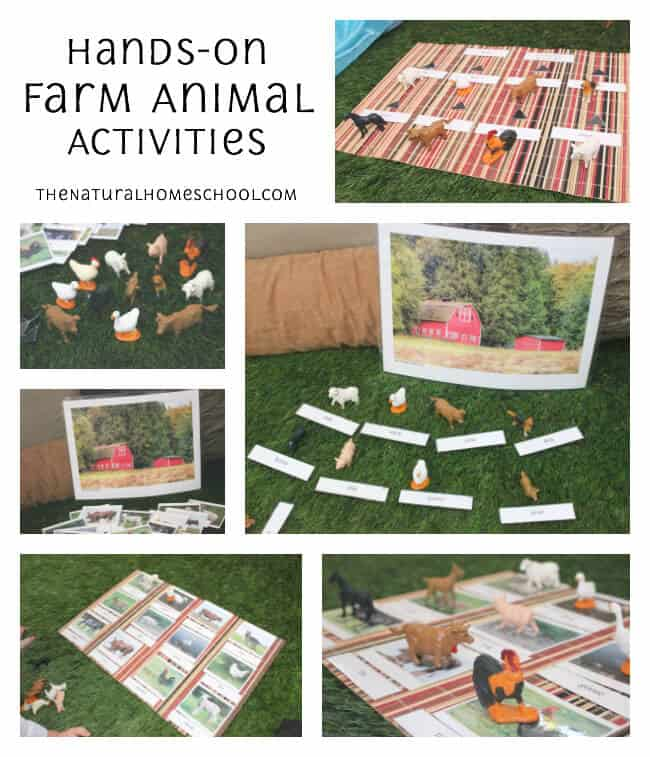 In our post, Make a Farm Diorama, you will be able to print two awesome sets about farm animals. One is a set of 3-part cards with the picture of the animals and cards with the names of the animals.