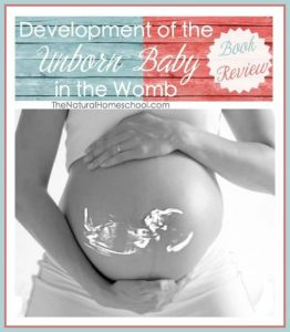 Development of the Unborn Baby in the Womb