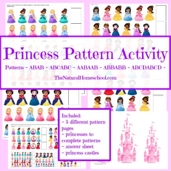 picture about Printable Activity Books named Fairy Story Routines Guides Princess Practice Printable