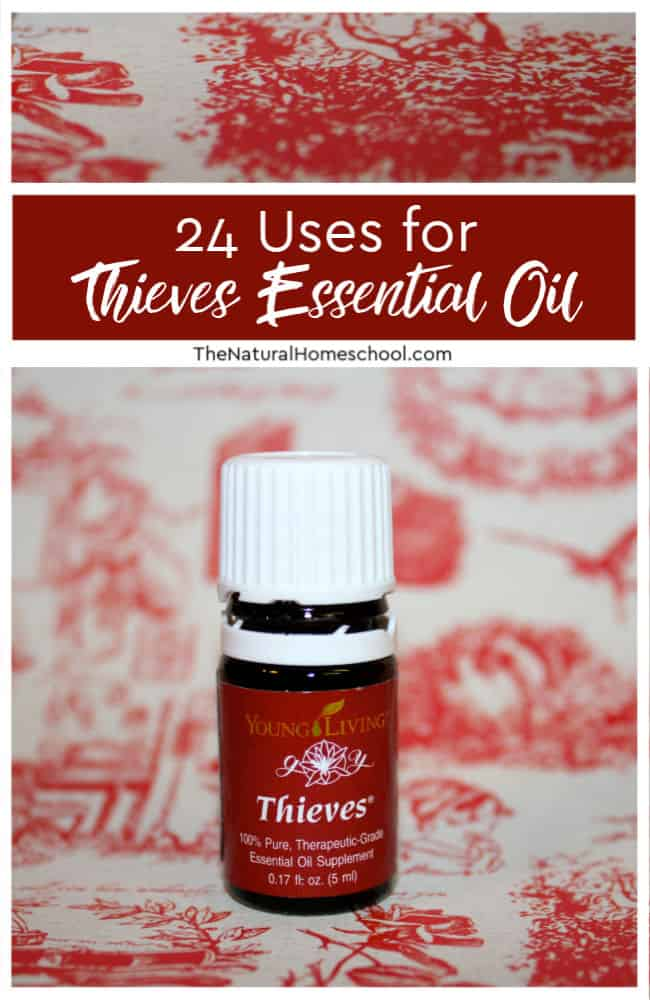 Take a look at what essential oils this Thieves blend contains, 24 ways you can use it.