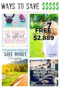 Easy Ways to Save Money {Link Party 96}