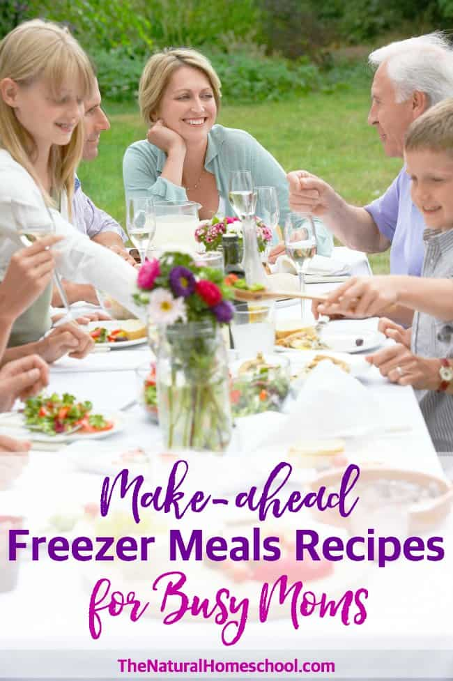 Make-ahead Freezer Meals Recipes for Busy Moms