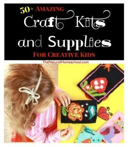 50+ Amazing Craft Kits and Supplies