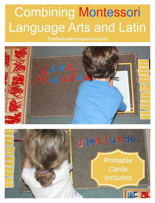 Combining Montessori Language Arts and Latin