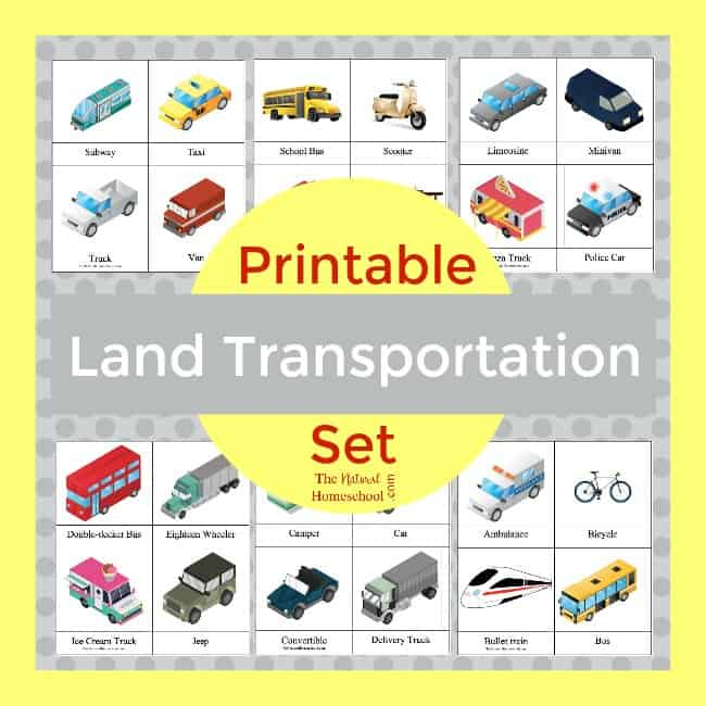 Land Transportation Lessons for Kids