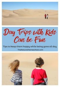Day Trips with Kids Can be Fun {Tips to Keep Them Happy}