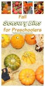 Fall Sensory Bins for Preschool
