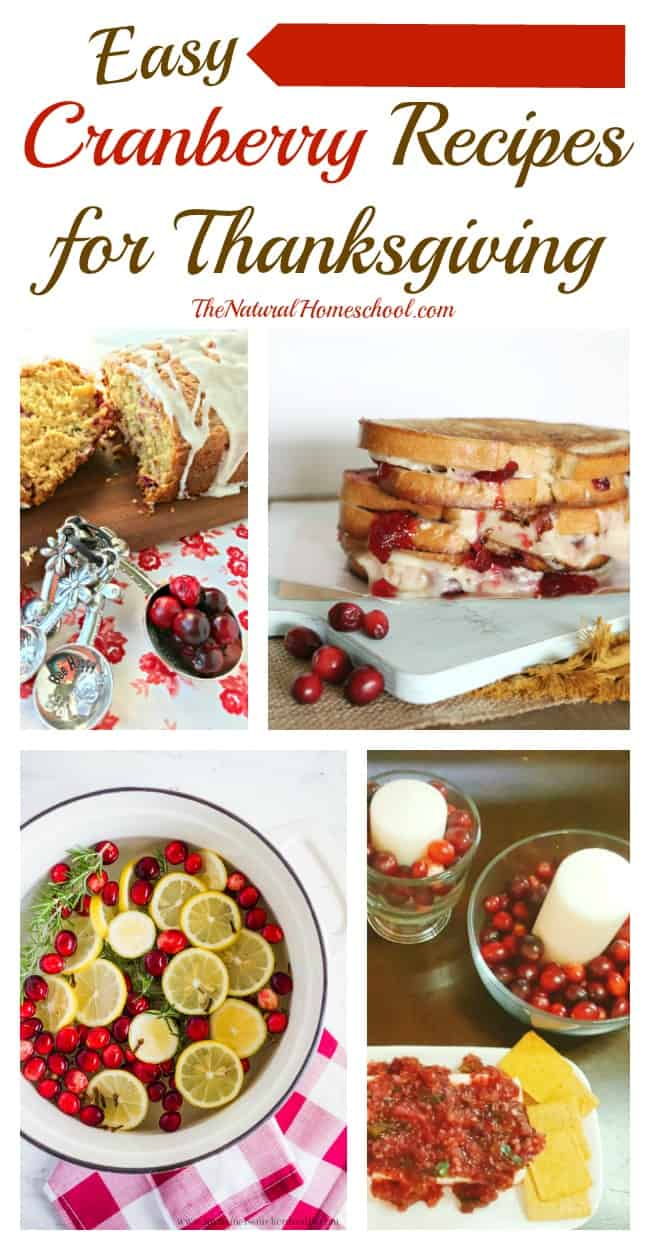 This is an awesome list of posts that bring you beautiful advice to make Easy Cranberry Recipes Thanksgiving a wonderful experience.