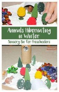 Animals Hibernating in Winter ~ Sensory Bins for Preschoolers