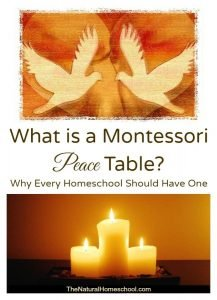 Montessori Peace Table ~ Why Everyone Should Have One