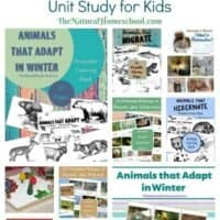 Animals in Winter: Hibernation, Migration and Adaptation Unit Study for Kids