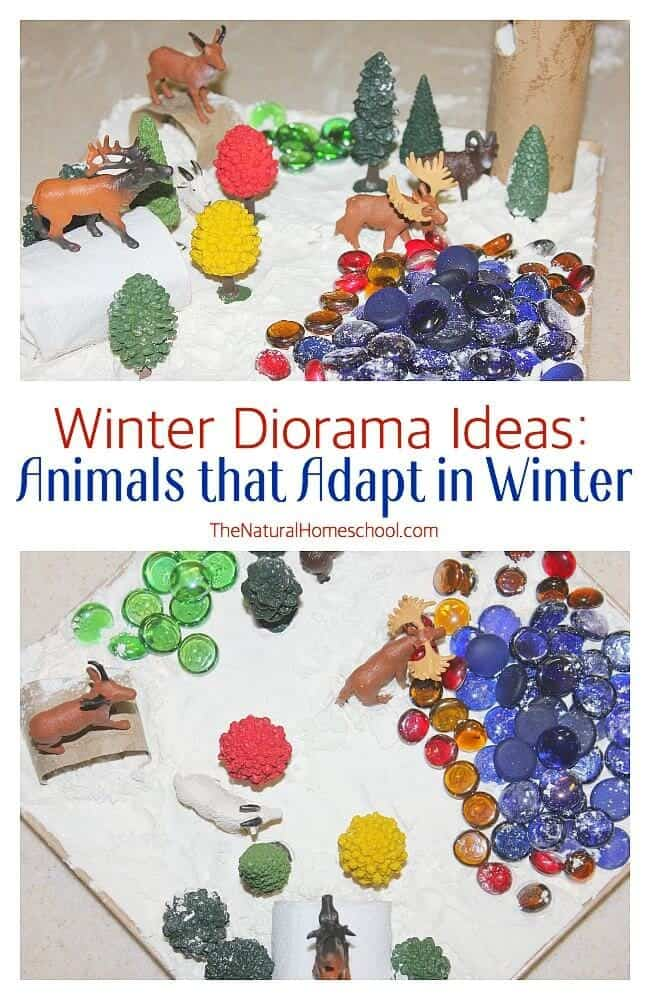 We used this bin with different animals as a sensory bin or a Winter diorama about animals that hibernate in Winter, but now, it is about animals that adapt in Winter. Come see!