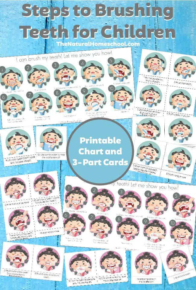 In this post, we will be sharing the specific steps to brushing teeth for children using a brushing teeth chart and 3-part cards.