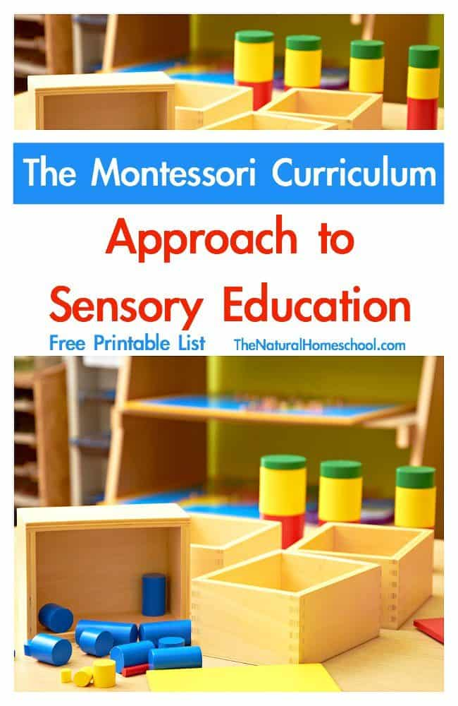 In this post, I share with you the best Montessori books for parents and teachers. Come and see just how you can change your child's life for the better wit this wonderful method, the Montessori Method.