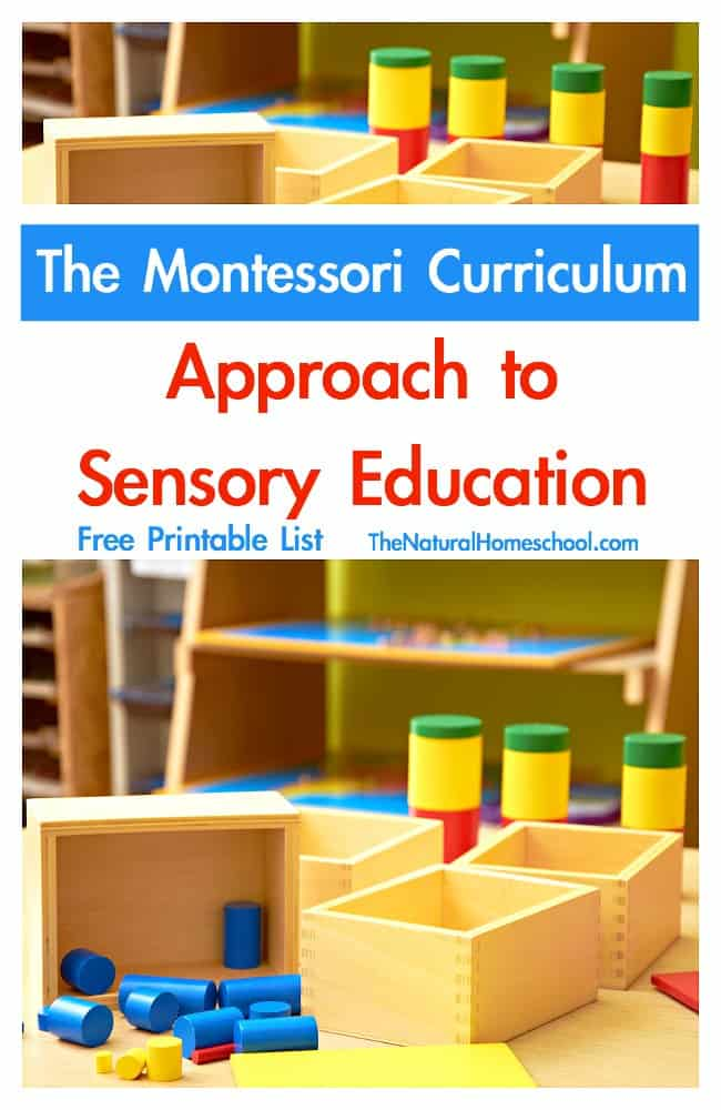 montessori sensorial introduction So, my sensorial file is handed in - whew here is my introduction to sensorial i have added in a section i wrote on the modern terms for senses and how this relates to what i'm learning in my montessori course.
