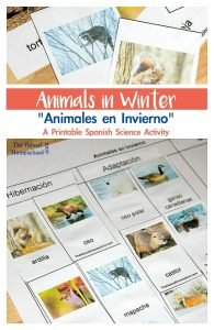 Animals in Winter: Migration, Hibernation & Adaptation IN SPANISH {Printable & Video}