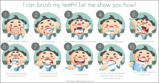 Steps to Brushing Teeth for Children (Printable Chart and