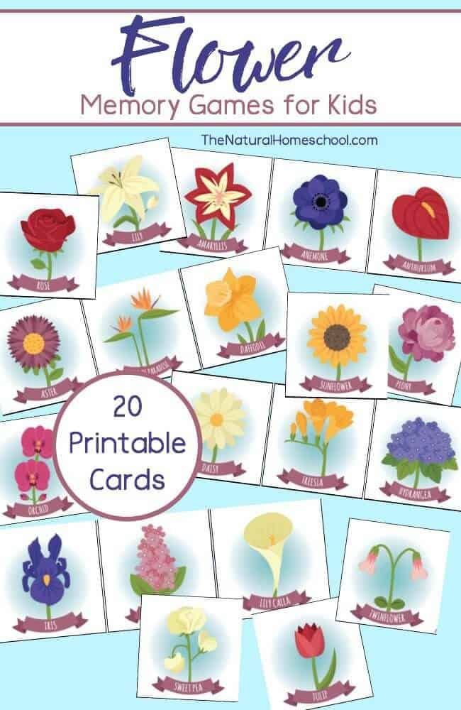 photo regarding Printable Memory Games for Seniors referred to as Flower Memory Video games for Little ones (Printable) - The Organic