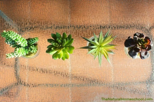 The Best Realistic Artificial House Plants The Natural