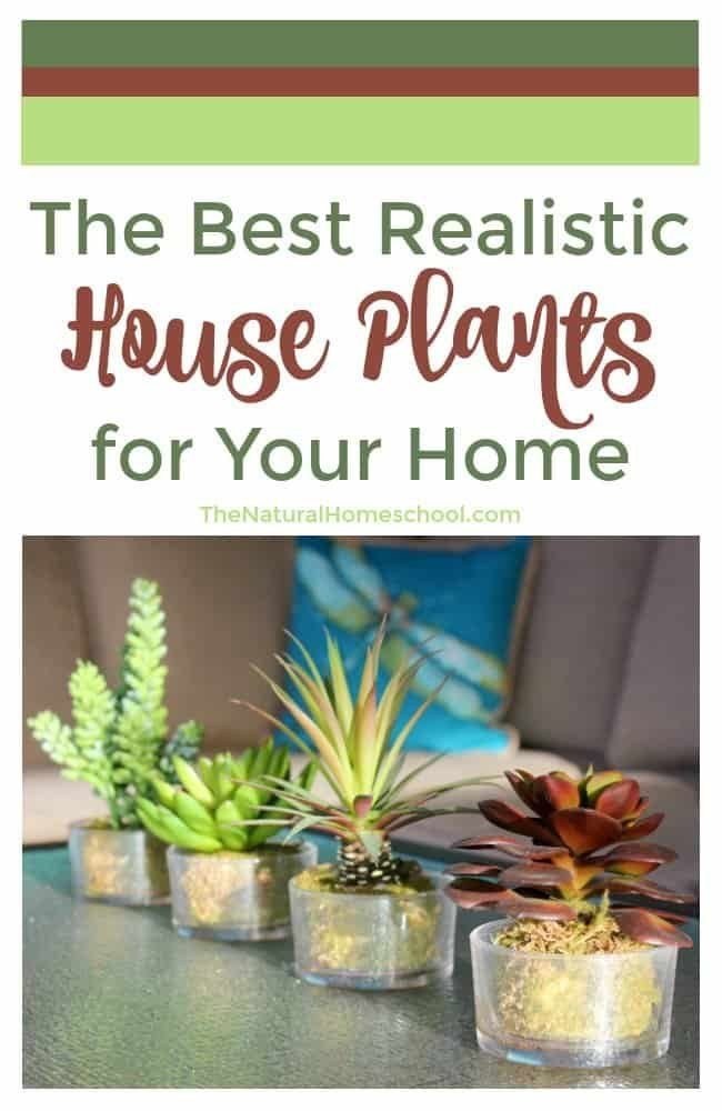 I love real plants inside the house and we have a dozen or so of those, but I'm going to be honest with you, realistic artificial house plants are the best, especially with bigger ones. Take a look at ours!