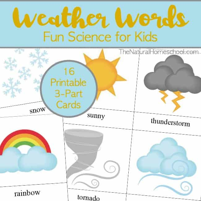 Take a look at these fun weather words for kids cards and print them out for you to teach your littles about the weather.