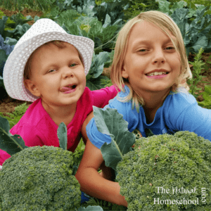 Whether you have a green thumb or a black thumb there are certainly benefits to gardening with kids. Plus, there is a plethora of natural learning opportunities along the way!