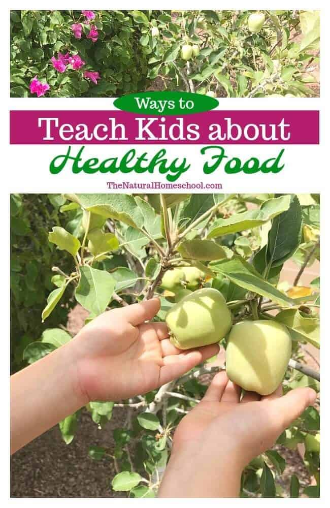 We love learning about making good food choices in our homeschool. But we go a step further: we teach kids about healthy food by showing them how to grow healthy food, too.