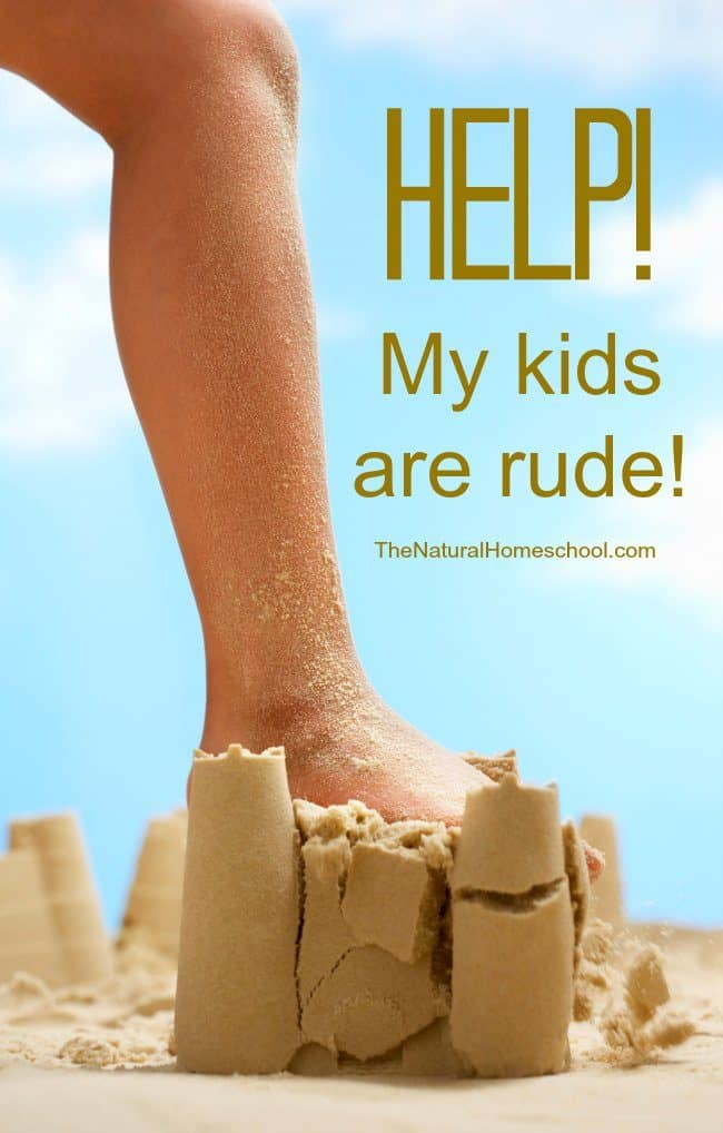 "I'm going to let you in on a conversation I had with my friend (who shall remain nameless) about a struggle she has with her kids. I'll also tell you the advice I gave her, too. Hopefully, if you are also saying, ""Help! My kids are rude!"" this will help you."