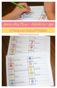 Handwriting Flower Activities for Kids {Montessori-Inspired Printable}