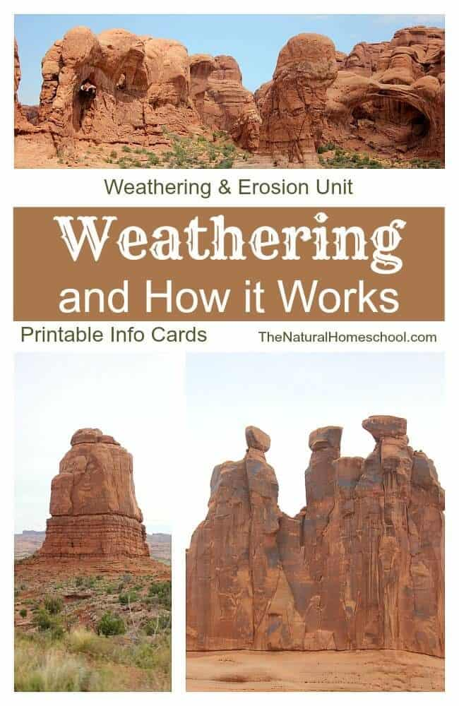 The children have learned so much about how weathering works that I just had to share with you!