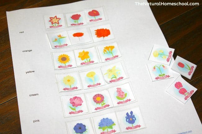 We have been having a lot of fun with our flower activities for kids series! We have flower matching memory cards and flower handwriting worksheets. Now, we have a fun color sorting activity.